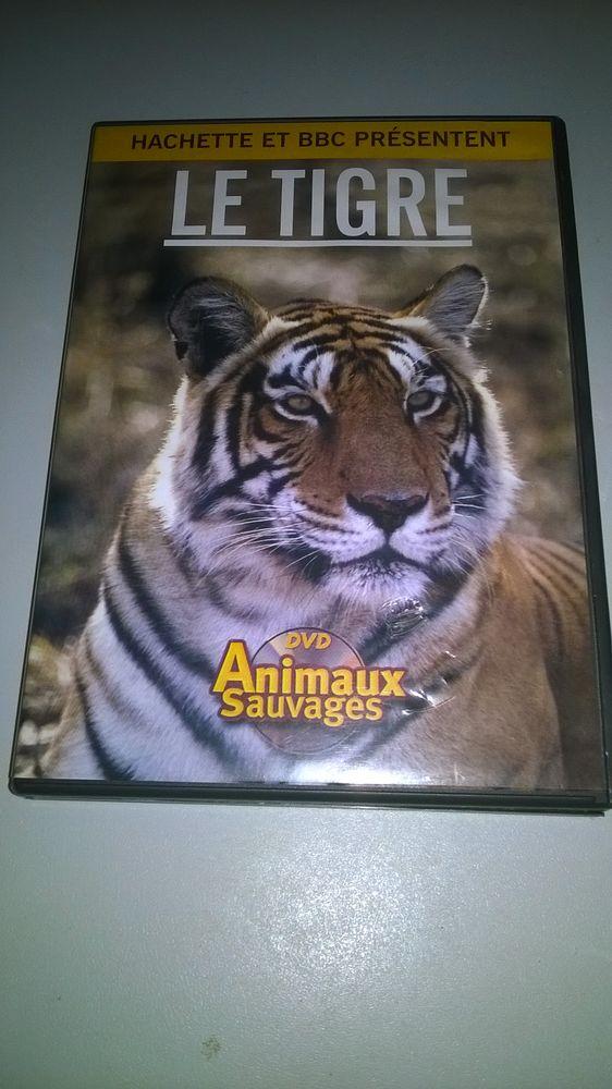 DVD Le Tigre  1998 Excellent etat Hachette Par Mike Birk 9 Talange (57)