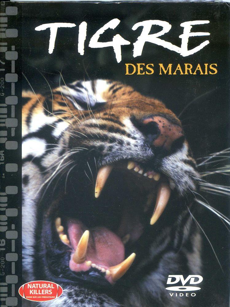 Tigre des marais  2 Rennes (35)