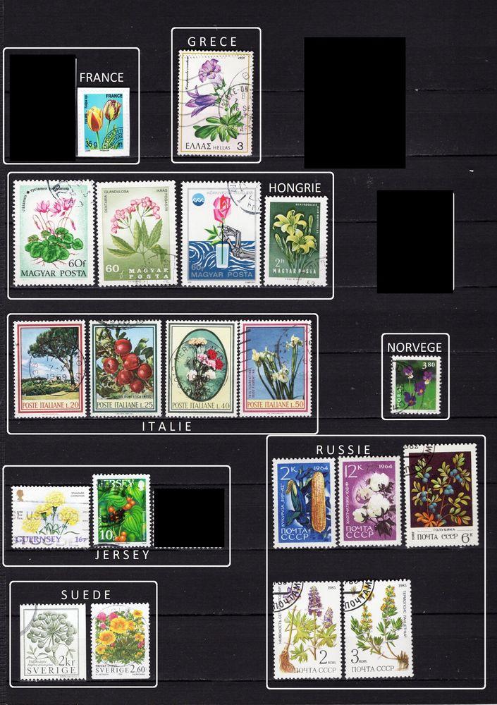 lot de 129 timbres d'EUROPE sur la FLORE, FRUITS et LEGUMES 4 Les Églisottes-et-Chalaures (33)