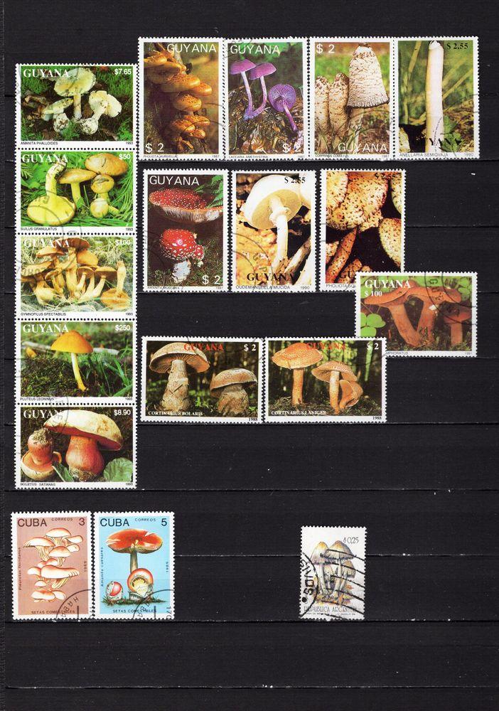 lot de 31 timbres de MONDE avec des CHAMPIGNONS 2 Les Églisottes-et-Chalaures (33)