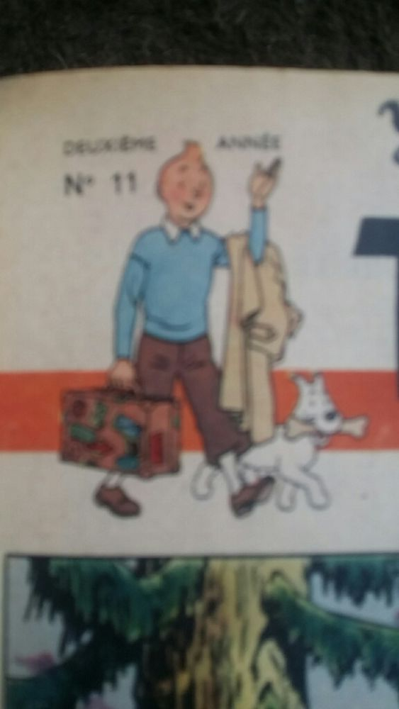 TINTIN journal BD collection hergé rare Livres et BD