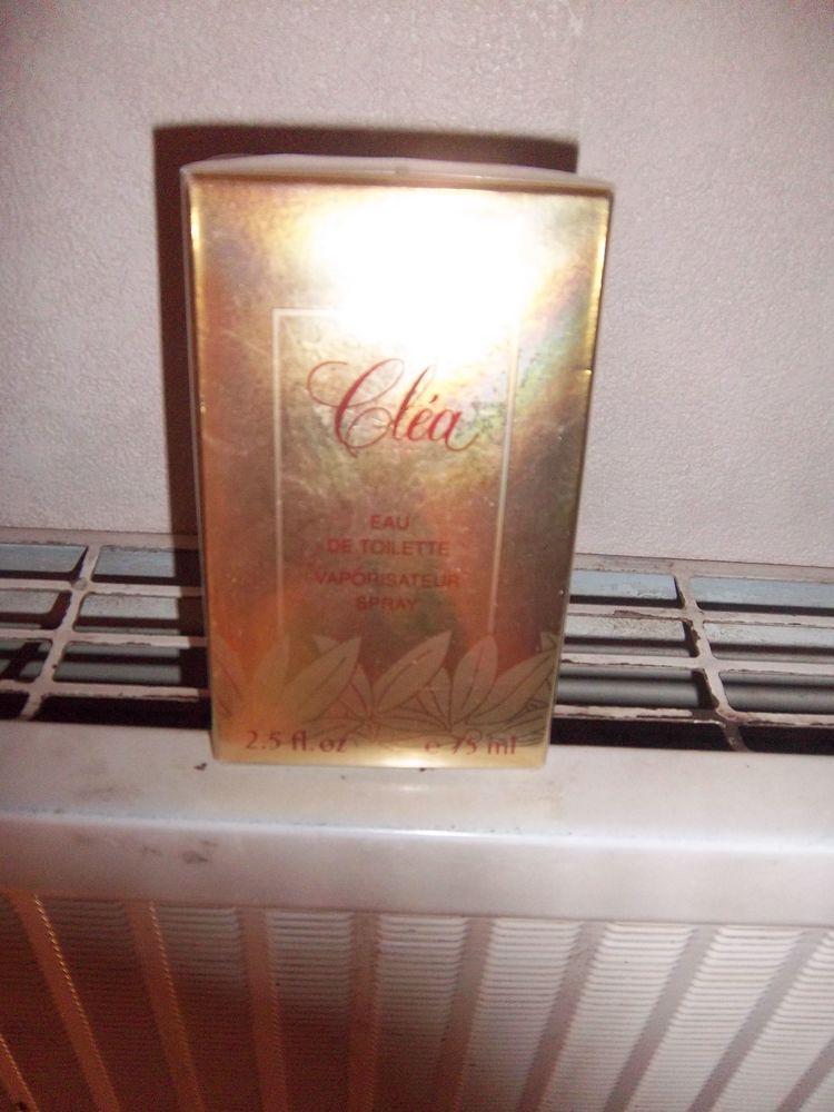 Eau de toilette Clea 46 Bossay-sur-Claise (37)