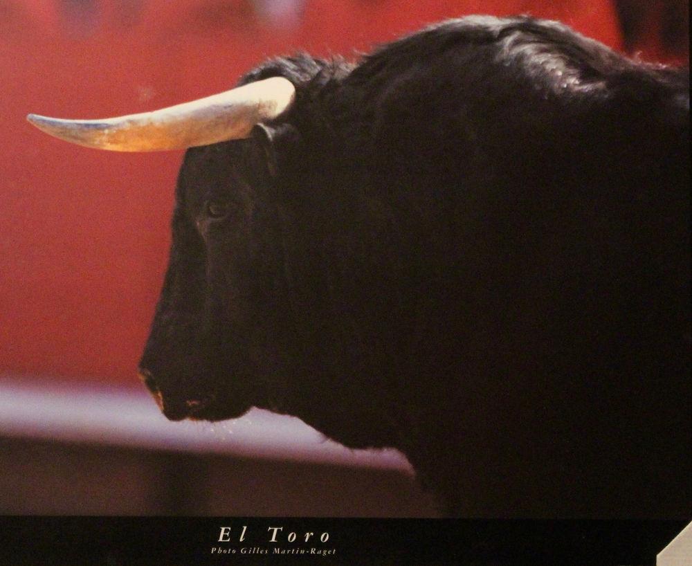 EL  TORO    50 Anglet (64)