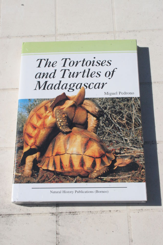 THE TORTOISES AND TURTLES OF MADAGASCAR 55 Limoux (11)