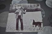 45 tours vinyle de Johnny Hallyday 5 Perreuil (71)