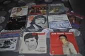 Lot de 45 tours vinyles avec  Hugues Aufray  10 Perreuil (71)