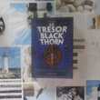 LE TRESOR BLACKTHORN de Kevin SANDS Ed. Bayard Jeunesse