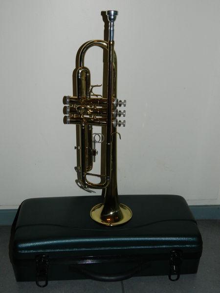 trompettes occasion lyon 69 annonces achat et vente de trompettes paruvendu mondebarras. Black Bedroom Furniture Sets. Home Design Ideas