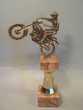 Trophée Moto Cross Trail Laiton et Marbre.