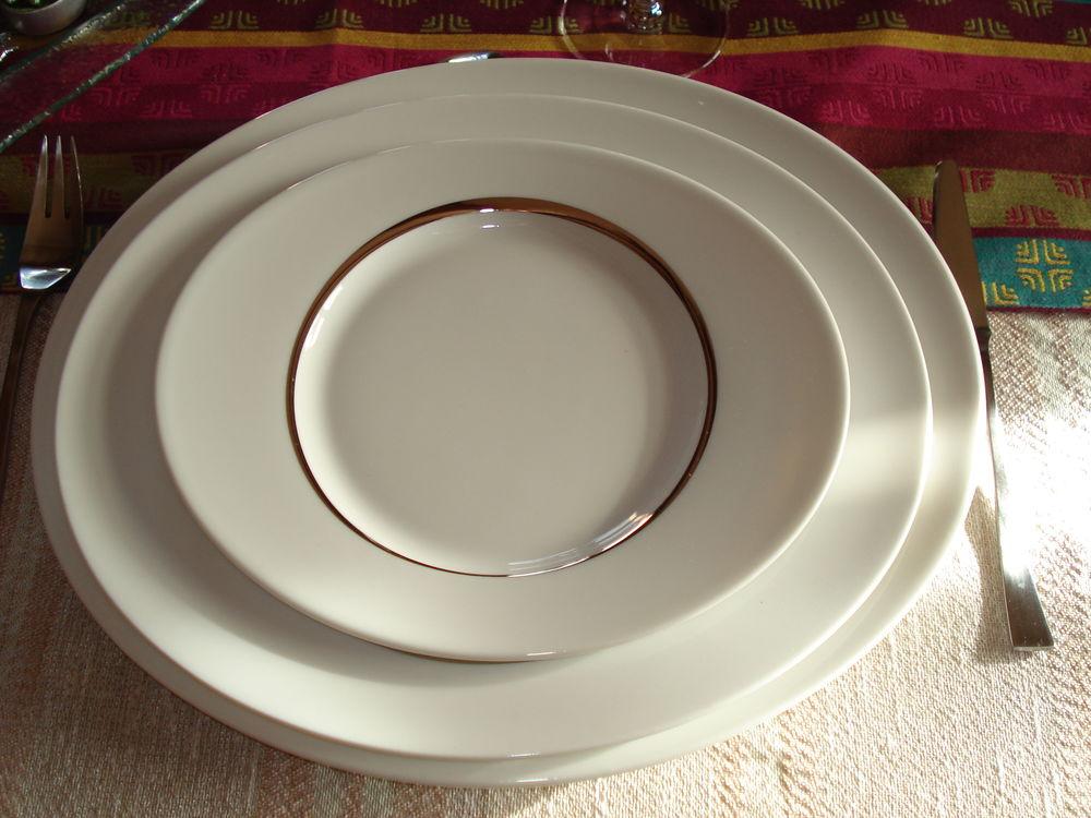 vaisselle neuve en porcelaine GuyDegrenne 80 Custines (54)