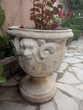 Vasques de jardin
