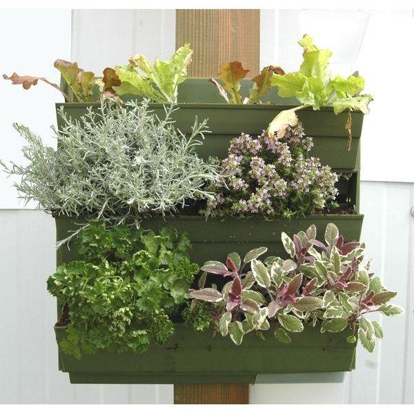 mur vegetal balcon jardinire mini rosiers dco florale plantes aromatiques petit balconjpg with. Black Bedroom Furniture Sets. Home Design Ideas