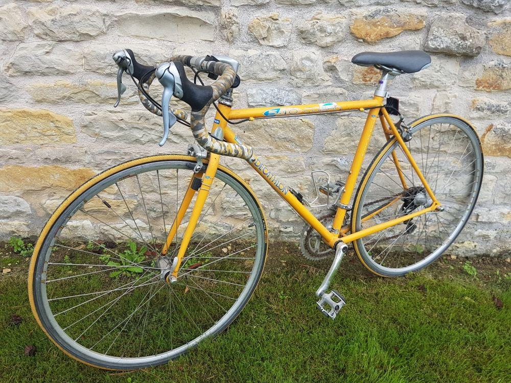 Vélo de course vintage. 85 Sainte-Soulle (17)