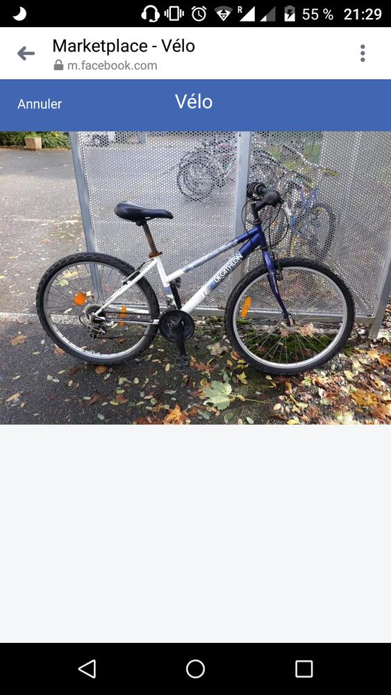 Un vélo  Decathlon  adulte 70 Pau (64)