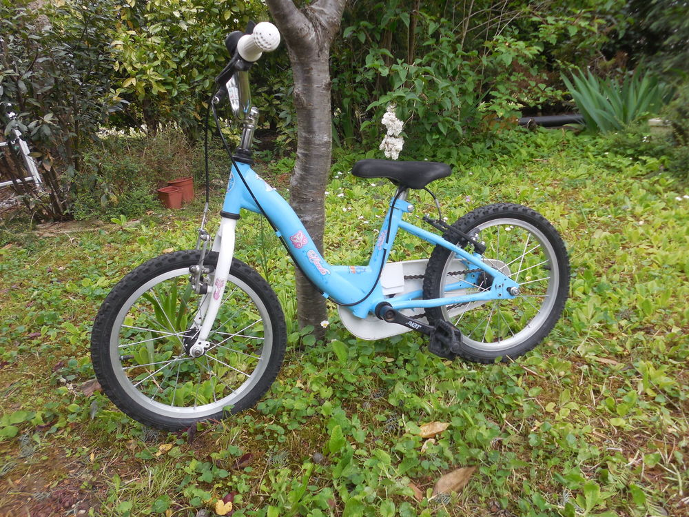 Vélo  enfant 16 pouces : 5 à 7 ans environ 38 Pontault-Combault (77)