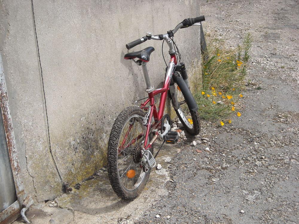 vélo enfant 55 Donnemarie-Dontilly (77)
