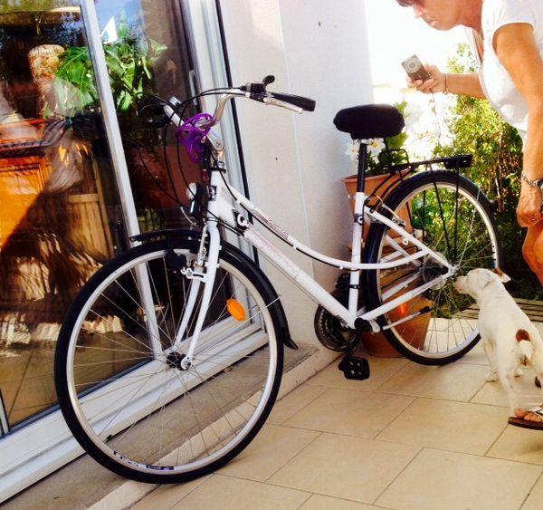 Vélo VTC femme Quantum Tout ALU utilisé 15 kms environ  190 Soubise (17)