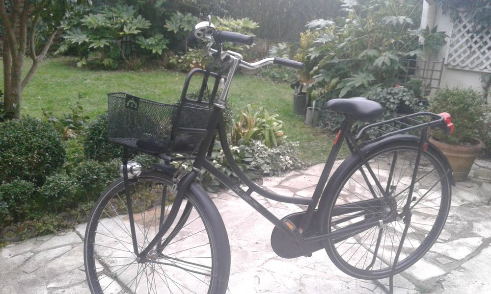 vélo hollandais 190 Rennes (35)