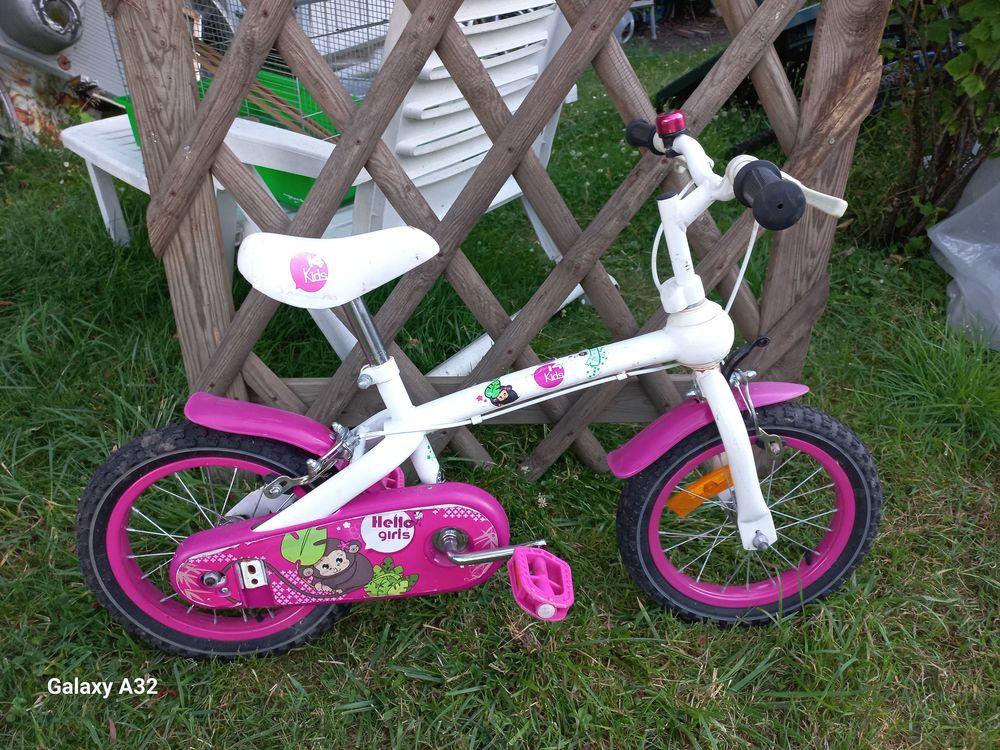 VELO REINE DES NEIGES-VELO 16 POUCES-Vélo enfant de 4,5 ANS  40 Montfermeil (93)