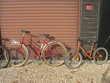 velos adultes et enfant Vélos