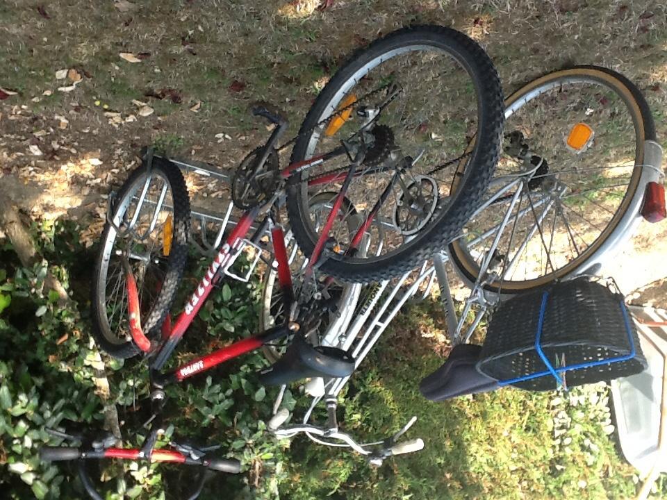 vélos homme et femme occasion 60 Legé (44)