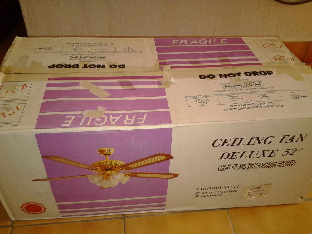 Ventilateur de plafond 99 Rognes (13)