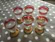 6 verres porto liqueur