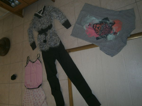 lot vêtements fille 12 ans 20 Annonay (07)
