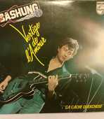 Vinyle Alain Bashung 9 Irigny (69)
