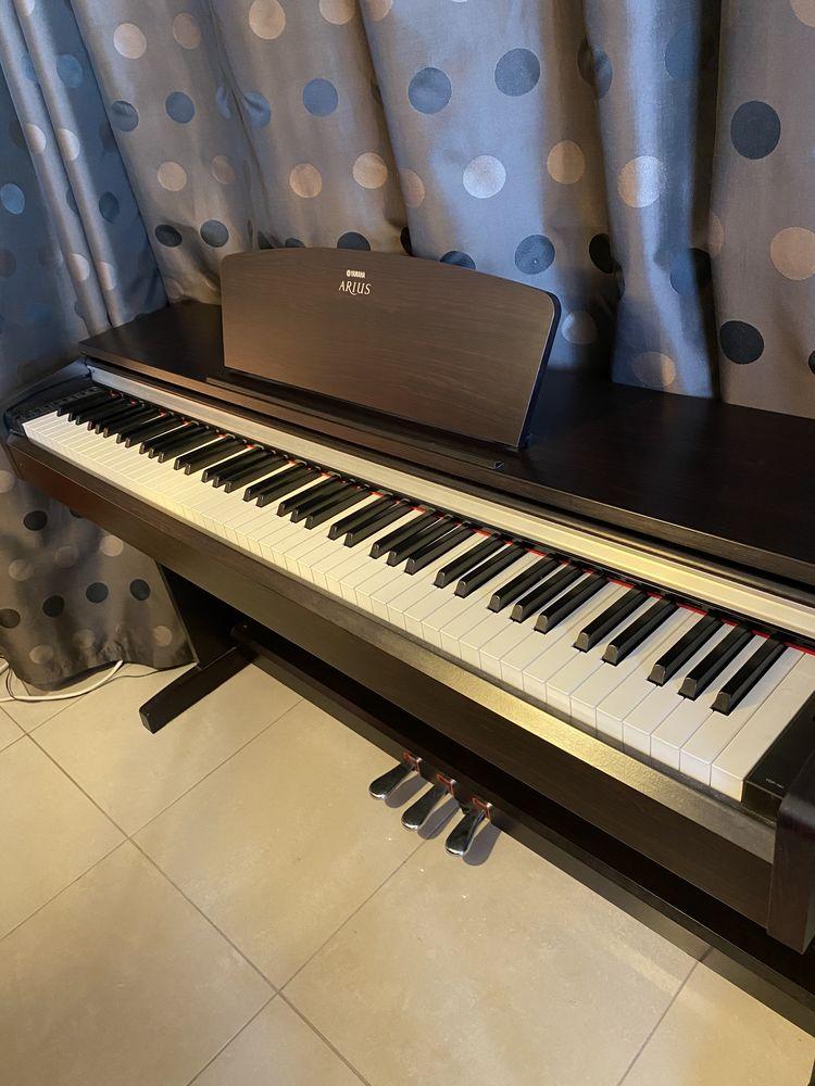 Yamaha Arius YDP-141 Piano électrique 800 Marsannay-la-Côte (21)
