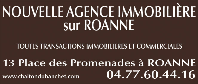 Chalton dubanchet immobilier agence immobili re roanne for Agence immobiliere 42