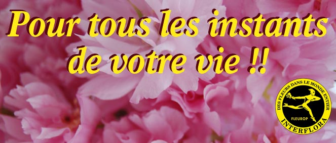 Interflora rhones vente v hicules occasion for Amarylice fleuriste lyon