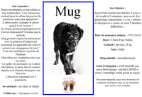 Mug attends toujours sa famille ...