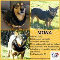 MONA cherche sa famille