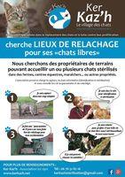 Recherche de lieux de relâche pour chats (fermes, maison à la campagne, entreprises...) 0