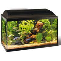 Recupère poisson  exotique ou  d'eau froide 59420 Mouvaux