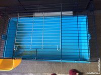 Cage lapin 25