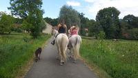 balade cheval, poney, cours ,  pension d extérieur