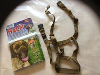 Collier d'education gros chien taille 4 12