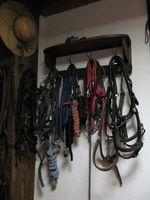 lot matériel de sellerie équitation, u pièce par pièce 0 48140 Saint-privat-du-fau