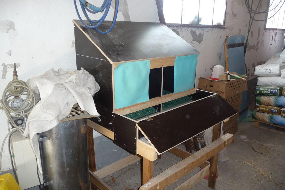 nid pondoir automatique pour poules pondeuses