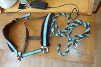 harnais pour poney ou âne neuf avec la laisse 25 59890 Quesnoy-sur-deûle