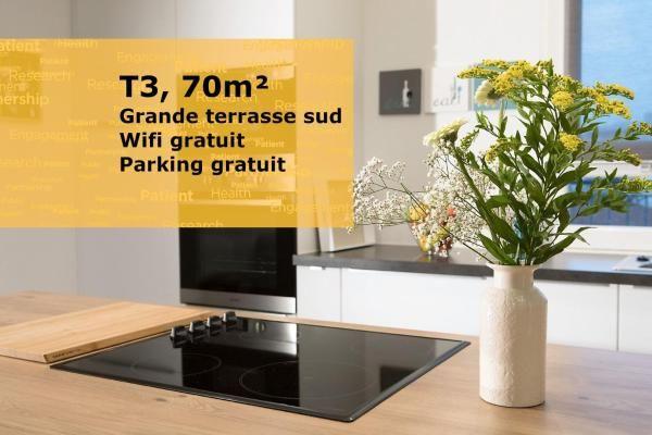 Dijon ville, T3 70m² pour 6. Grande terrasse Bourgogne, Dijon (21000)