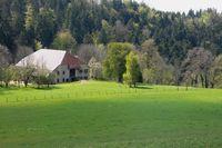 Le Monthury : au bout du monde ! Franche-Comté, Les Nans (39300)