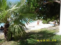 GUADELOUPE APPARTEMENT 2/4 PERS 320 A 480€ SEMAINE DOM-TOM, Saint-François (97118)