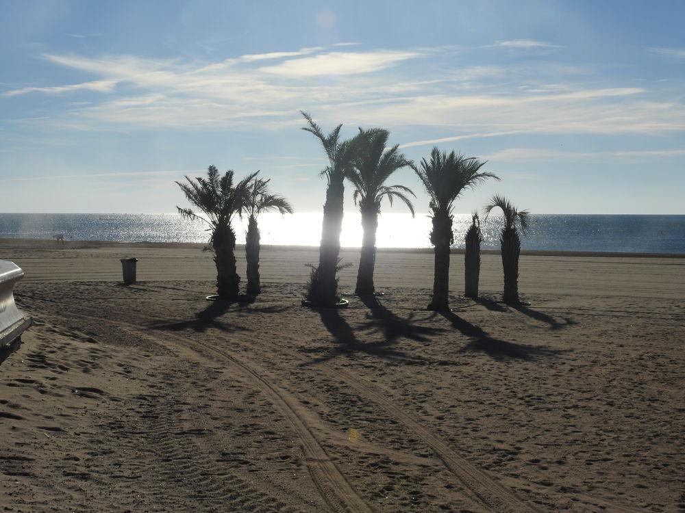 en front de mer à Narbonne plage Languedoc-Roussillon, Narbonne Plage (11100)