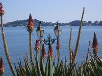 Beaulieu lumineux apart 4 pers ds pars près mer Provence-Alpes-Côte d'Azur, Beaulieu-sur-Mer (06310)