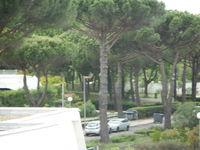 STUDIO 2 pers.avec parking Languedoc-Roussillon, La Grande-Motte (34280)