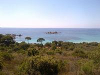 Location Villa saisionnière corse du sud  à Porto-vecchio