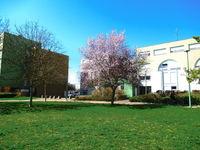 Location Meuble A Quetigny 21800 Annonces Appartements Meubles A